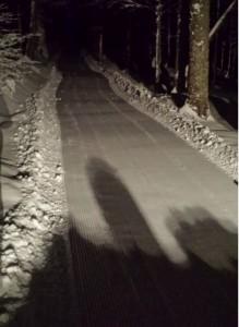 Lusen_winterrodeln